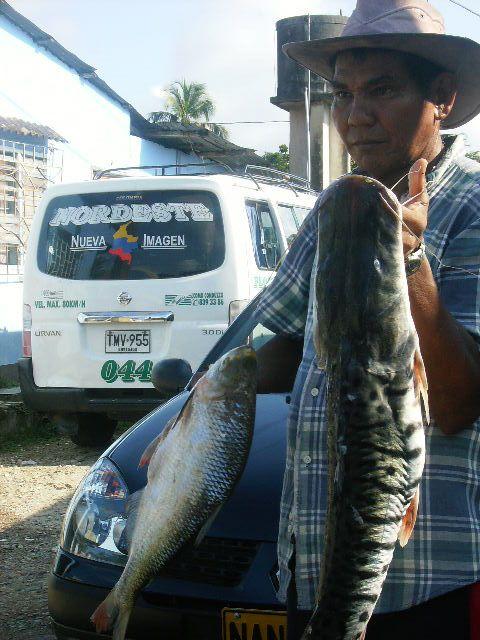 El mercado, su gente, el río como fuente alimento a través de la pezca