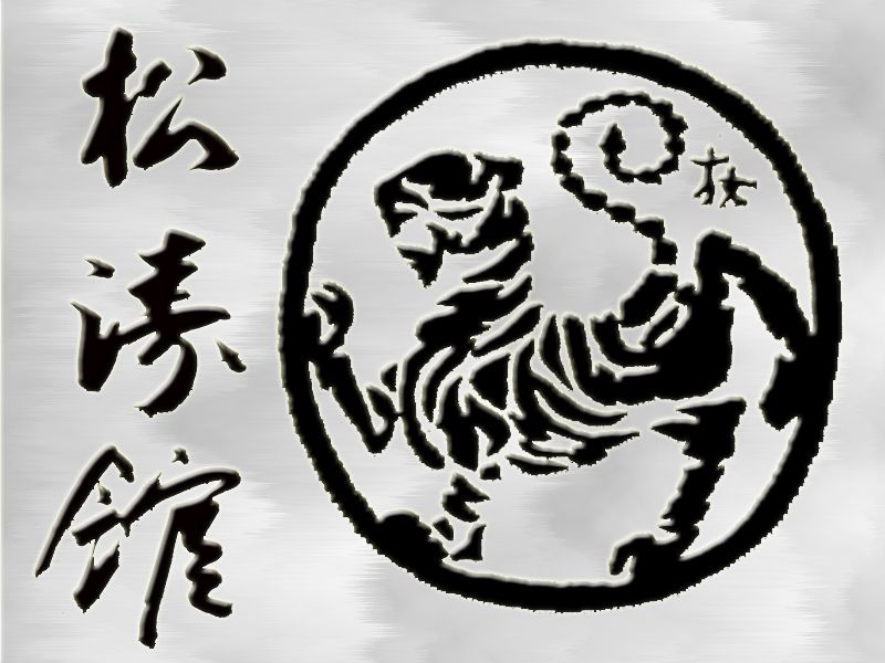 парень пришел рисунки каратэ шотокан удерживайте палец