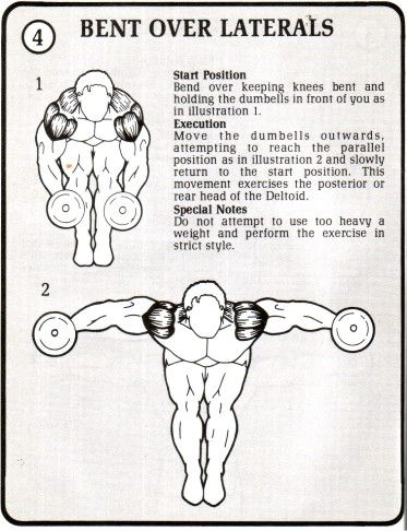 THE BENT OVER DUMBBELL LATERAL RAISE