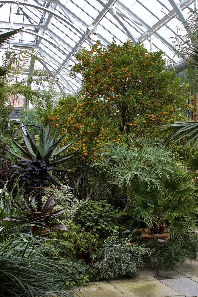 L\'Orangerie at Tower Hill | Tower and Gardens