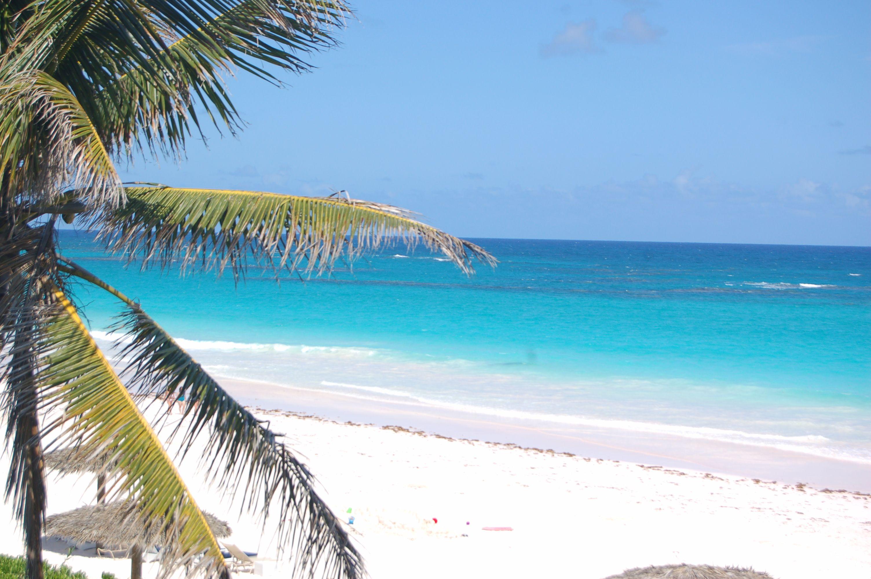 Pink Sand Beach Harbour Island Bahamas Bahamas Vacation Vacation Time Beautiful Places