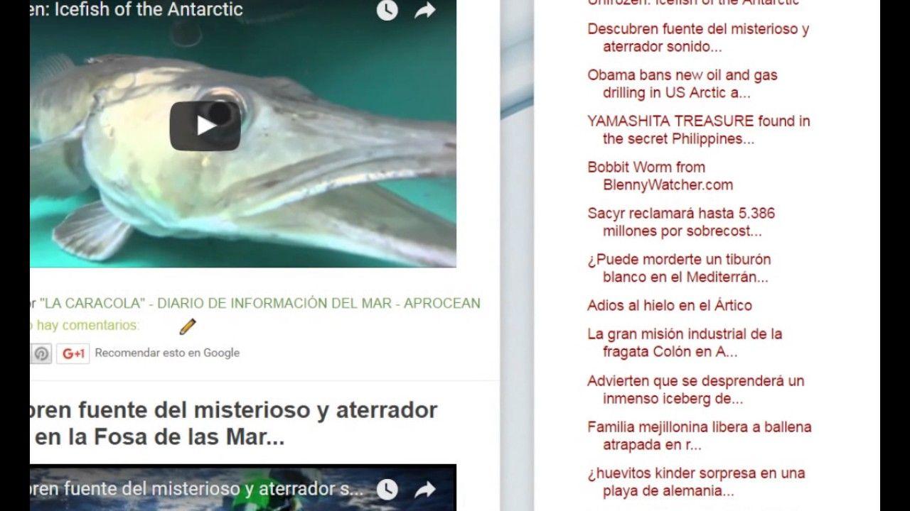 """09/01/17 12:23hs Boletín """"La Caracola"""" D.I.M. - Diario de Información del Mar Aprocean Blog http://aprocean.blogspot.com.es"""