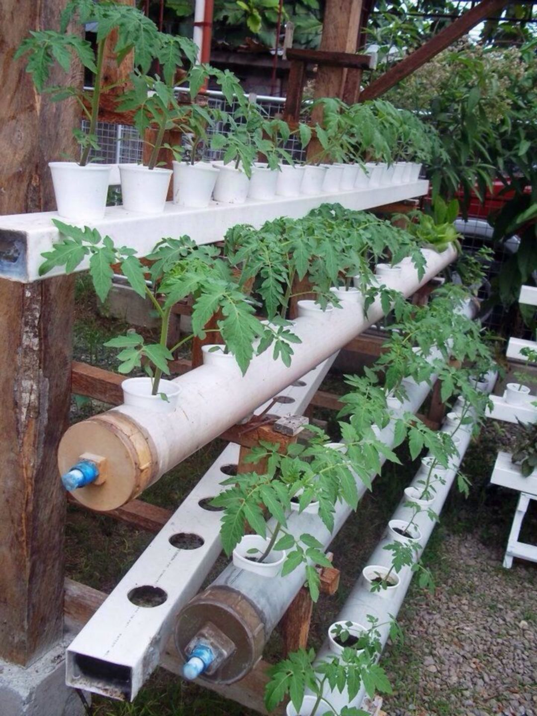 Easy 25 Diy Hydroponic Gardening Ideas That You Could Do 400 x 300