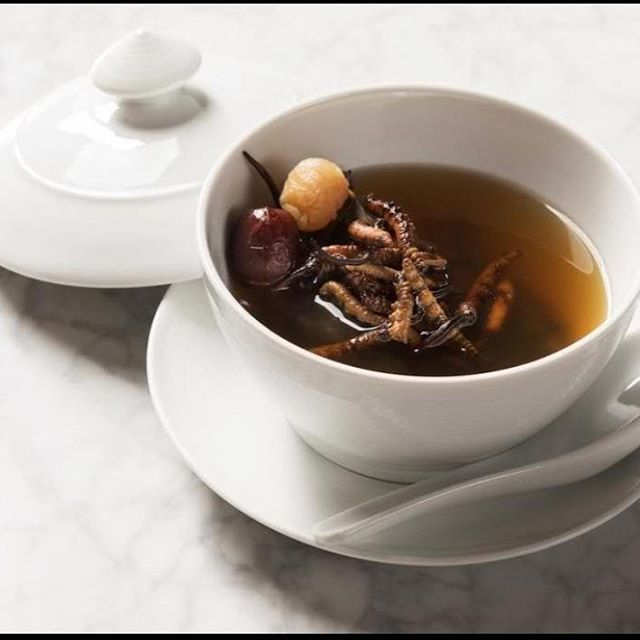 Image result for The worlds most expensive soup costs $688 per bowl – It has a fungus that's practically worth its weight in gold