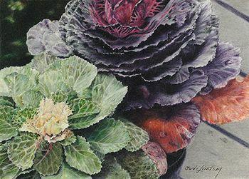 Judi Lindsay's Colored Pencil Artwork