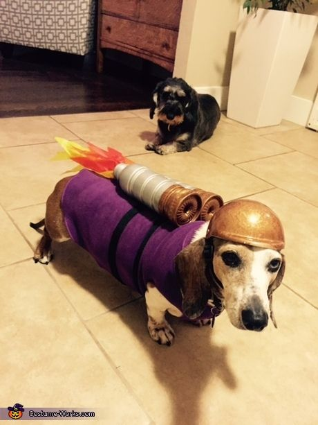 100 Creative Diy Costume Ideas For Dogs Dog Halloween Costumes