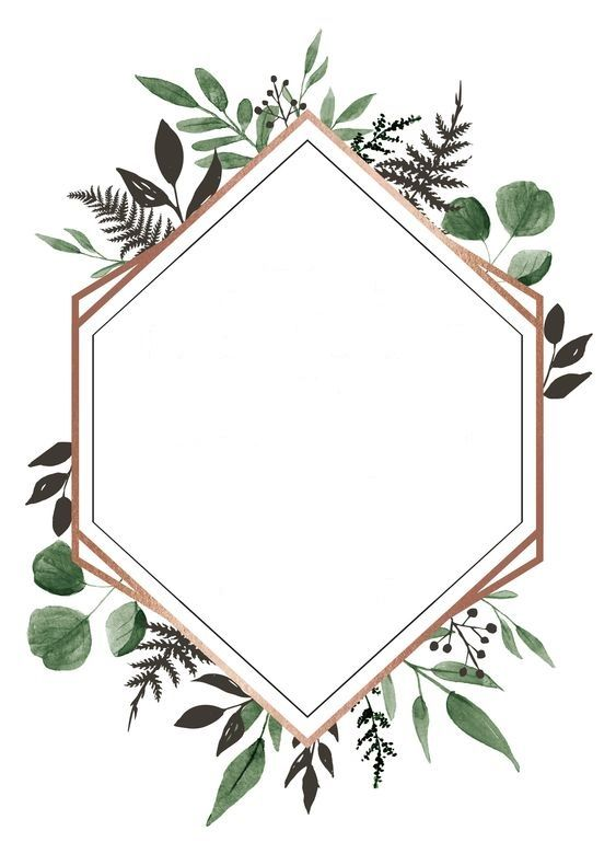 Pin By Ruqia Qu On ثيمات Floral Background Paper Floral Flower Frame