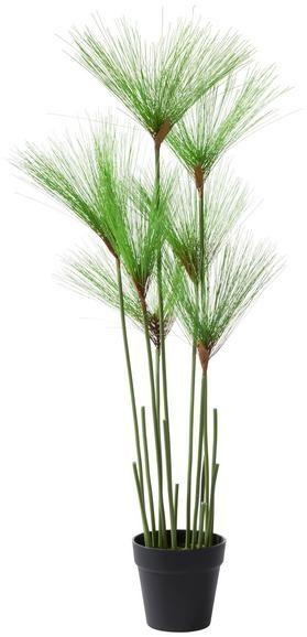 Kunstpflanze Belinda Grün online kaufen mömax Kunstpflanzen