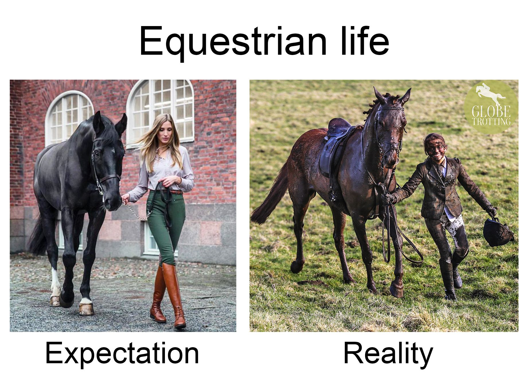 So True When Horses Are Involved You Don T Stay Clean For Long Funny Horse Memes Horses Funny Horses