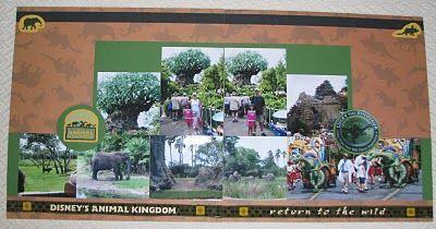 Animal Kingdom ideas
