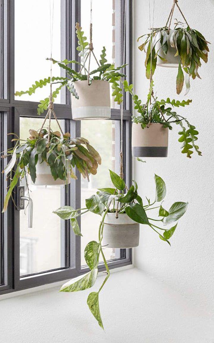 Hanging Planters 12 Einrichten Und Wohnen In 2019 Hängende
