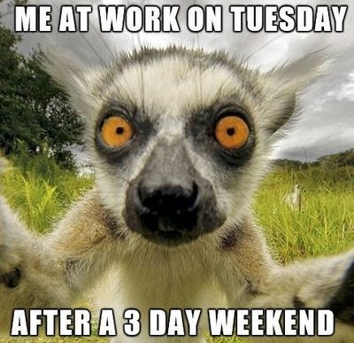 ME AT WORK ON TUESDAY AFTER A 3 DAY WEEKEND #3dayweekendhumor ME AT WORK ON TUESDAY AFTER A 3 DAY WEEKEND #3dayweekendhumor
