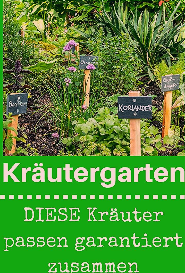 Photo of Kräutergarten anlegen | selbst.de