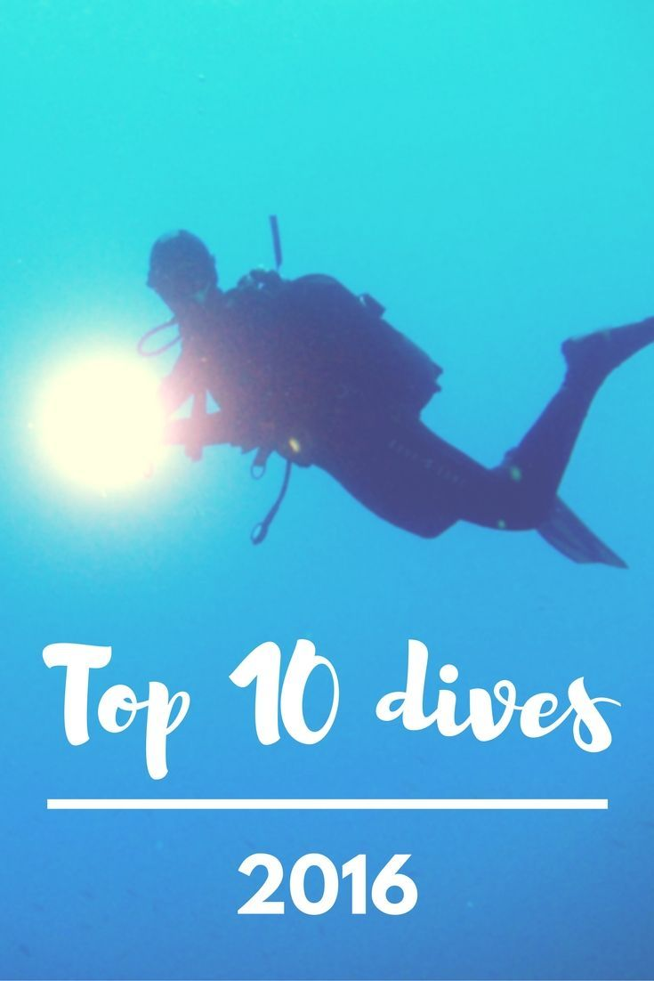 Top 10 dives 2016 my 10 favourite dive sites of my busiest scuba top 10 dives 2016 my 10 favourite dive sites of my busiest scuba diving year ever world adventure divers scuba diving vacations pinterest scubas 1betcityfo Gallery