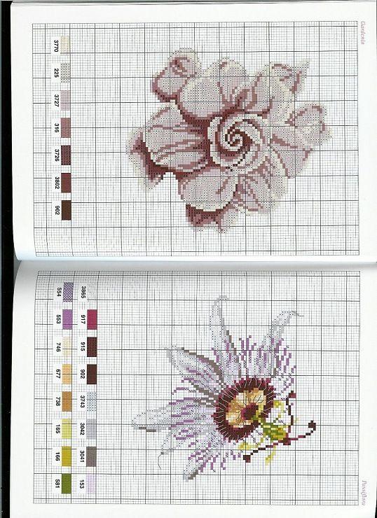 Pin de Eli en Dmc Flores   Pinterest   Flor, Punto de cruz y Puntos