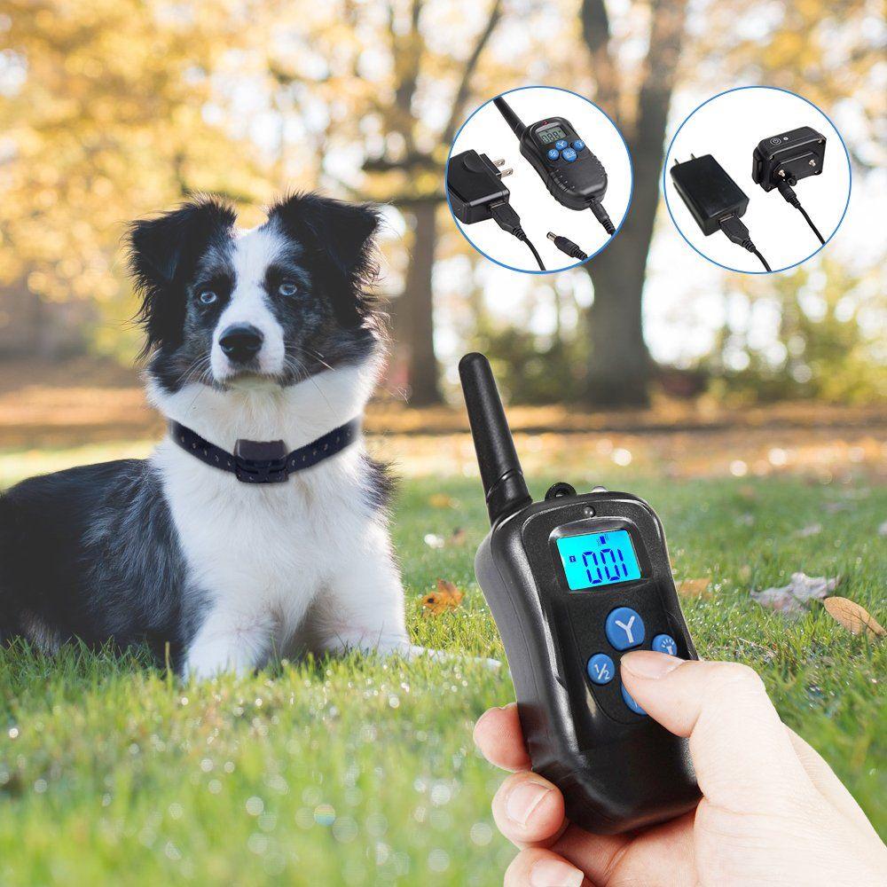 Raffaelo Remote Pet Dog Training Collar Rechargeable Ip7