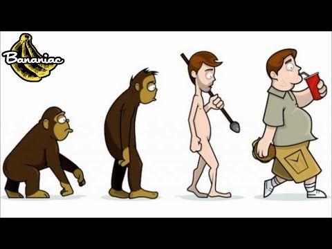 Evolution Of The Human Diet Paleo Diet Diet How To Eat Paleo