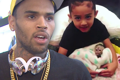 Monkey Seen With Chris Browns Daughter Isnt Hers