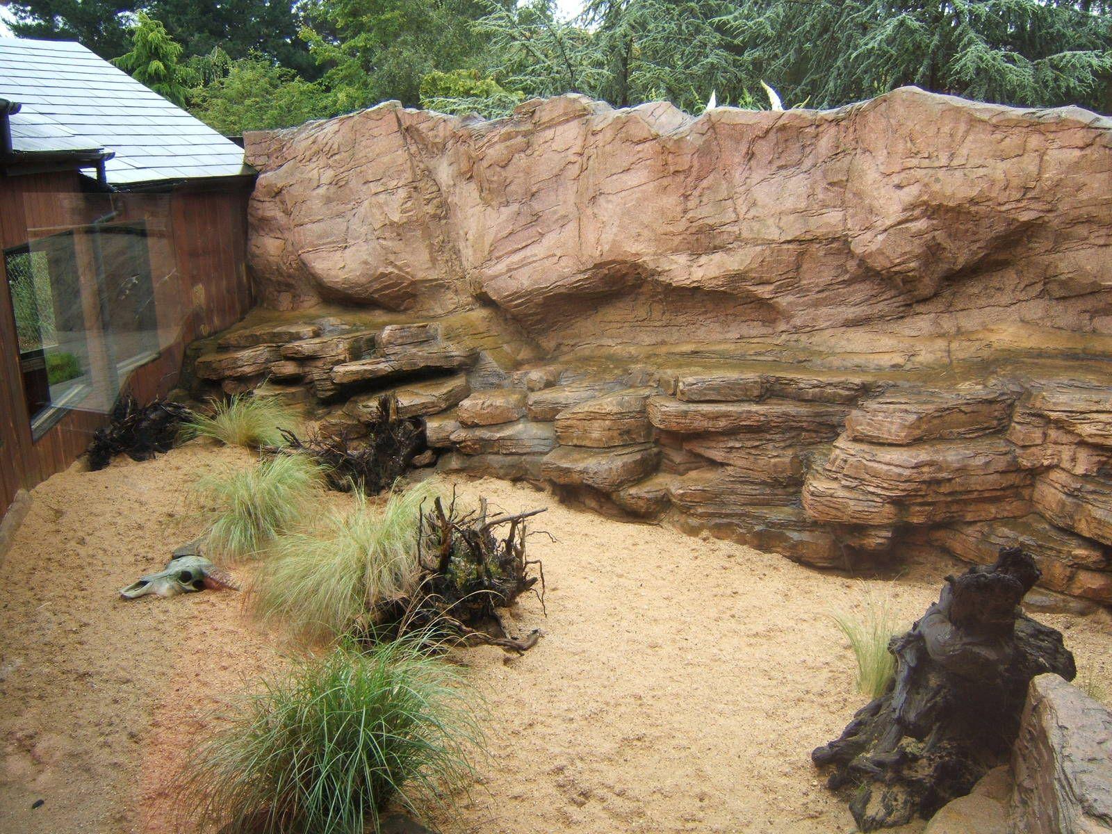View Of Outdoor Fennec Fox Enclosure