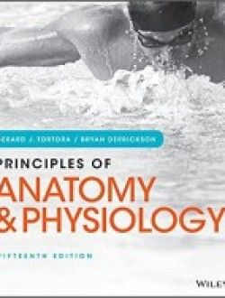 Anatomy And Physiology For Dummies 2nd Edition Pdf