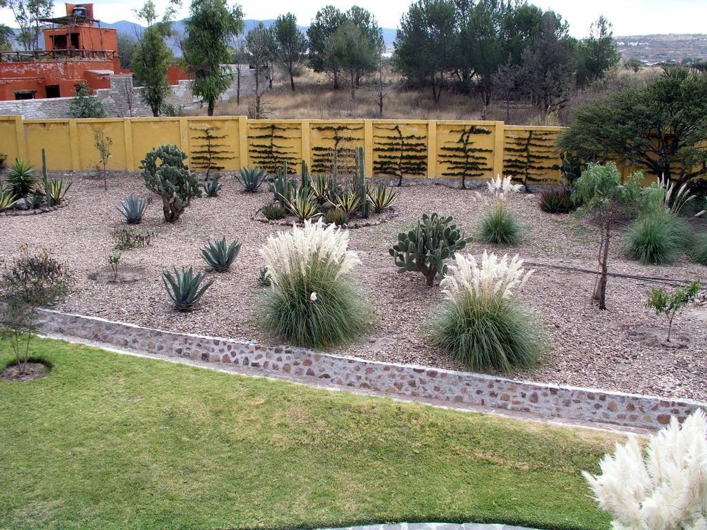 Diy xeriscape landscaping | Xeriscape, Xeriscape ...
