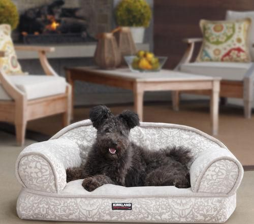 Bed And Bath Soft Material Sofa Picture Best Concepts Picture Best Decoration Example Kirkland Dog Bed Grey Col Pet Sofa Bed Extra Large Dog Bed Shop Dog Beds