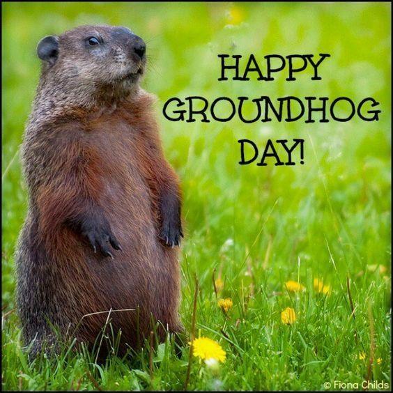 Happy Groundhog Day Image Quote Happy Groundhog Day Groundhog Day Groundhog
