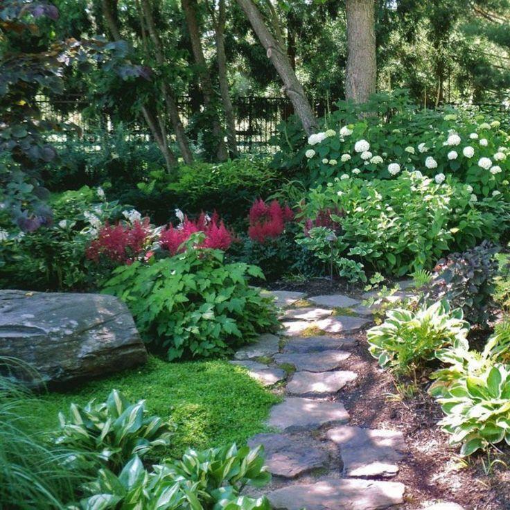 Photo of Atemberaubende Pflanzen für schattige Landschaften –   # Check more at pflanzen…