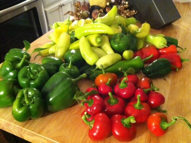 Canning peppers preserving freezing pinterest - How to can banana peppers from your garden ...