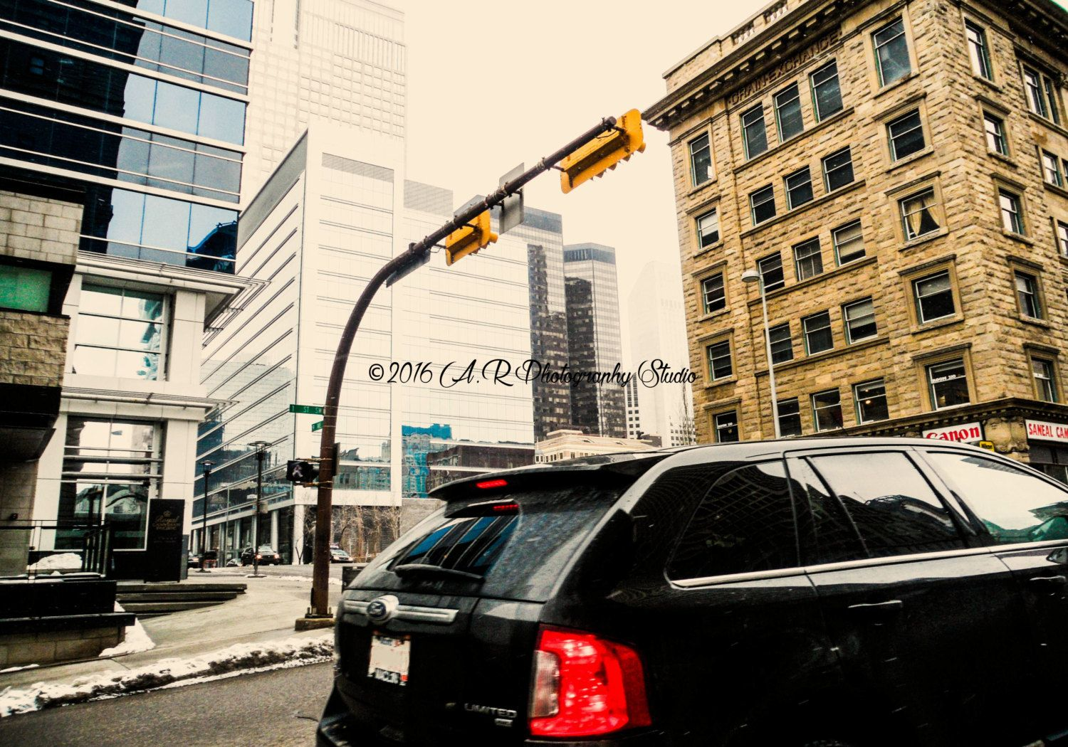 Looking up by ARphotographyStudio on Etsy