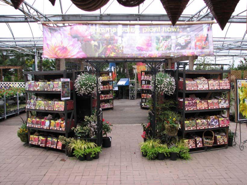 Displays van noort bulb wholesale flowers bulbs