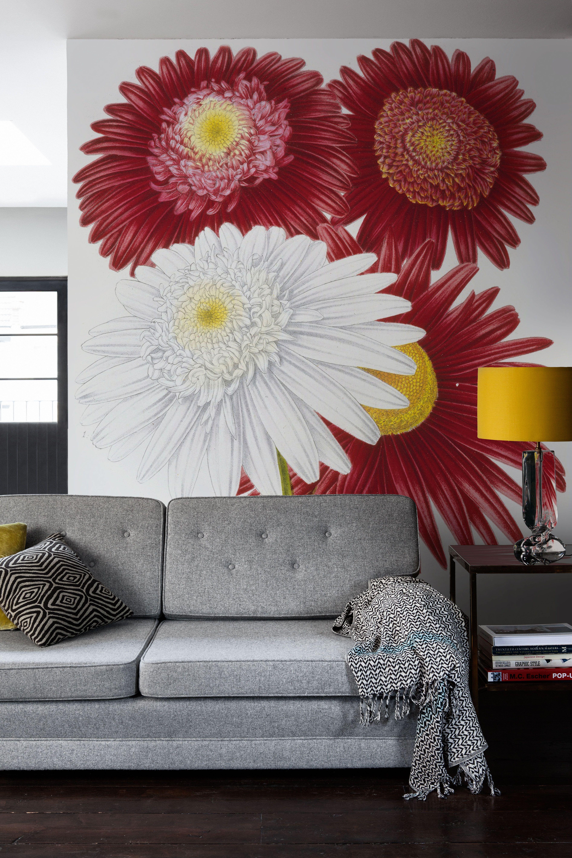 Murals Of Chrysanthemum Cvs By Royal Horticultural Society 3000mm X 2400mm Shop Surface View Mural Mural Wallpaper Wall Art Wallpaper