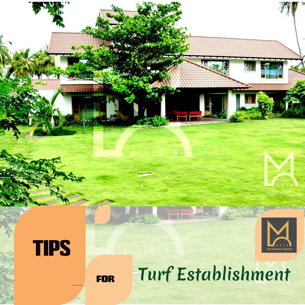 M Arch Garden Tips For Turf Establishment Landscape Maintenance Landscape Design Landscaping Company