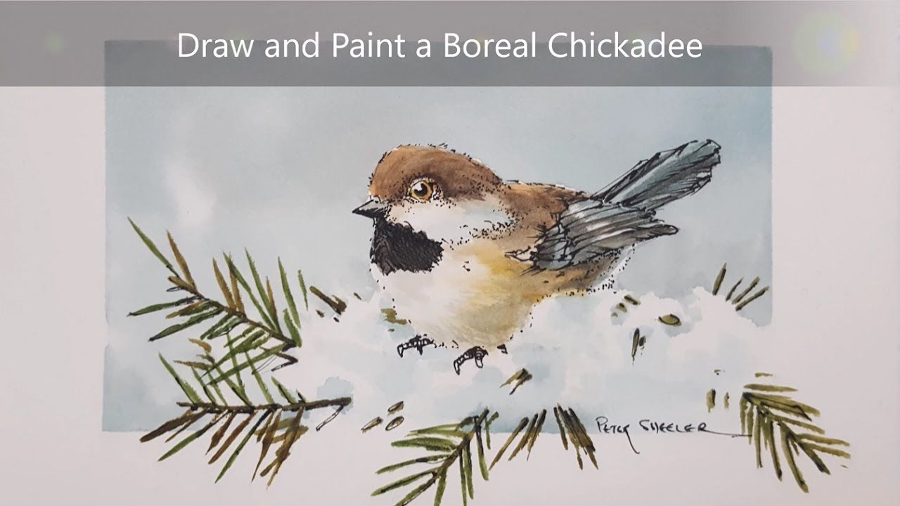 How To Draw And Paint A Bird Tutorial This Demonstration Include