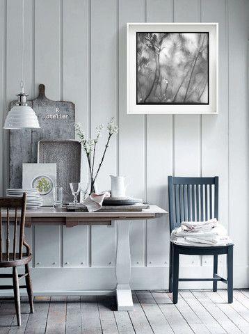 Fine Art Prints | Fern Prints | Nature Photography | Fine Art Black and White Photography | Monochrome Wall Art | Wall Decor | Modern Home Decor