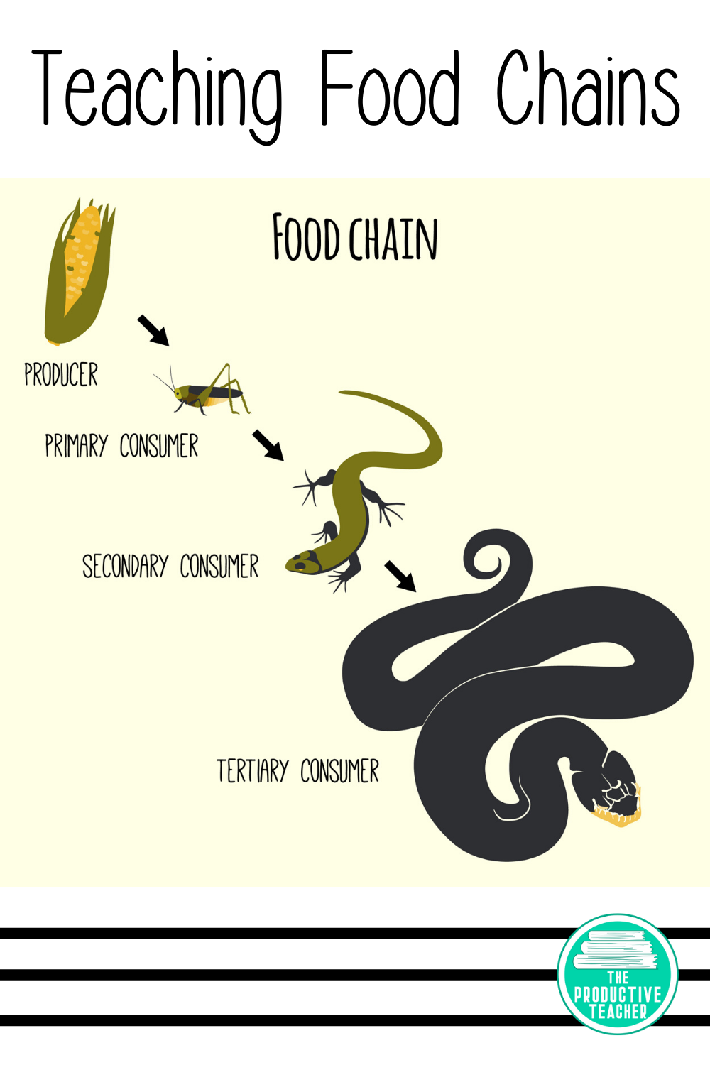 Food Chains Food Webs And Energy Pyramids Reading Passage Food Chain Science Reading Passages Reading Passages [ 1500 x 1000 Pixel ]