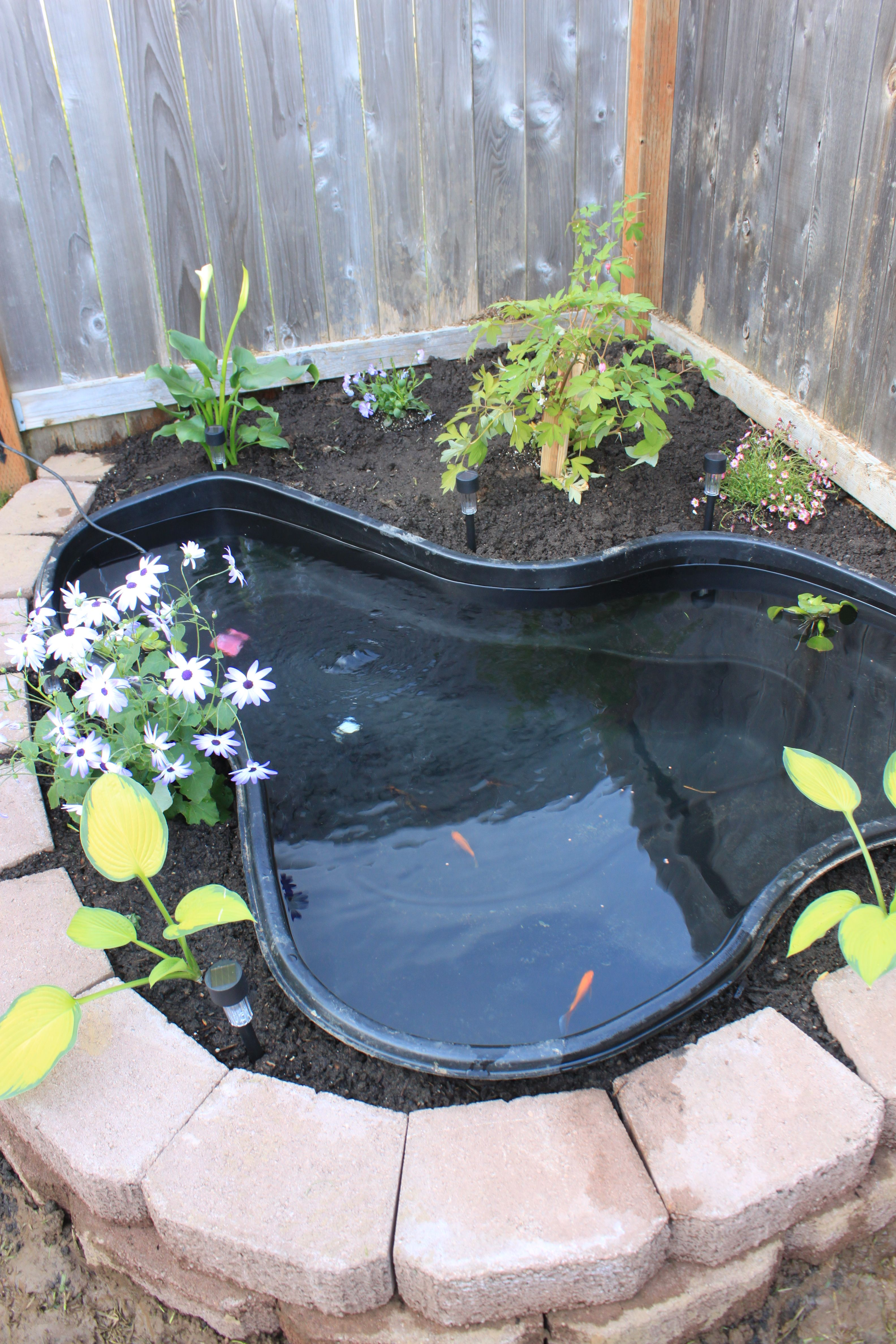 Pin by wayman tam on koi pond for Above ground koi pond design