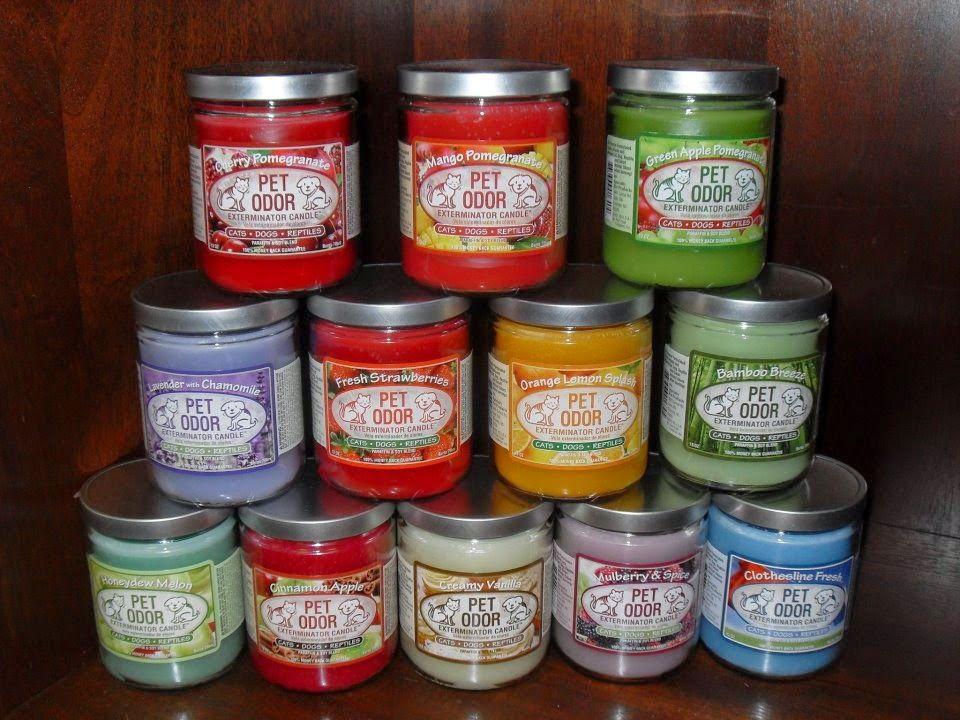 Carma poodale pet odor eliminator candle review pet