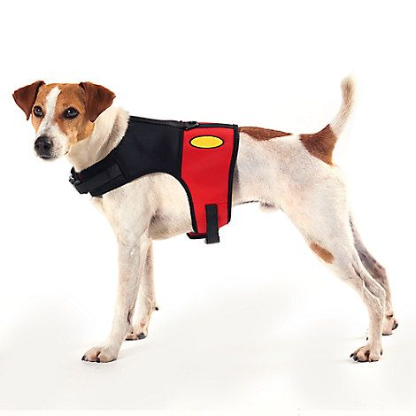 Mickey Mouse Costume Harness For Dogs Disney Mickey Mouse