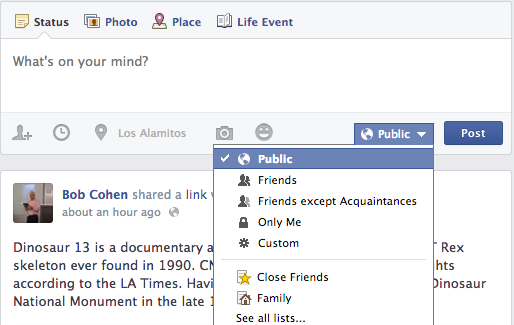 What is a Facebook Status Update?