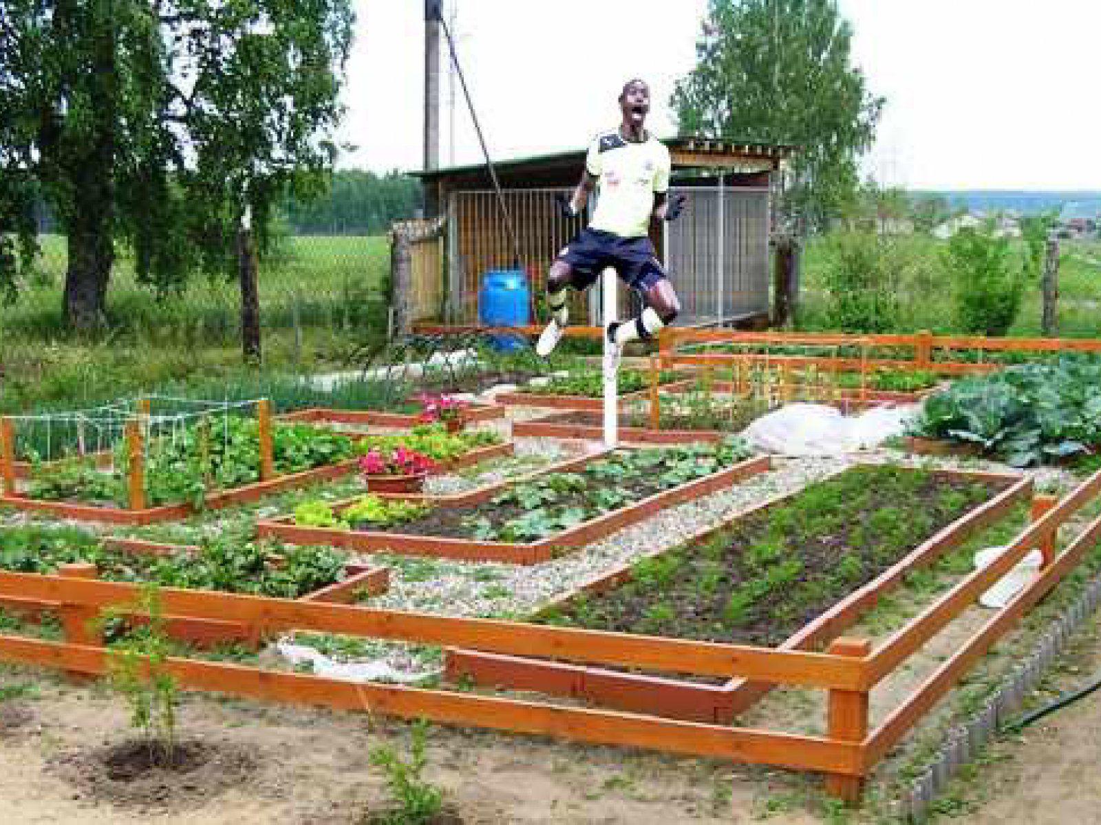 Картинки сад и огород своими руками фото 209