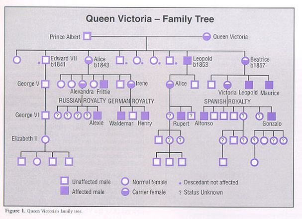Queen Victoria and hemophilia family tree   Russia of ...