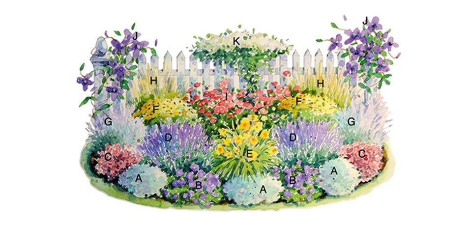 Enjoy easy care perennials flowers that come back every year even enjoy easy care perennials flowers that come back every year even in hot mightylinksfo