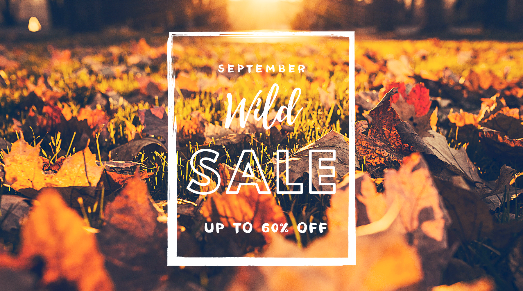 September Huge Sale!!!🎉🎉🎉Extra 10 for All Items !!! Code