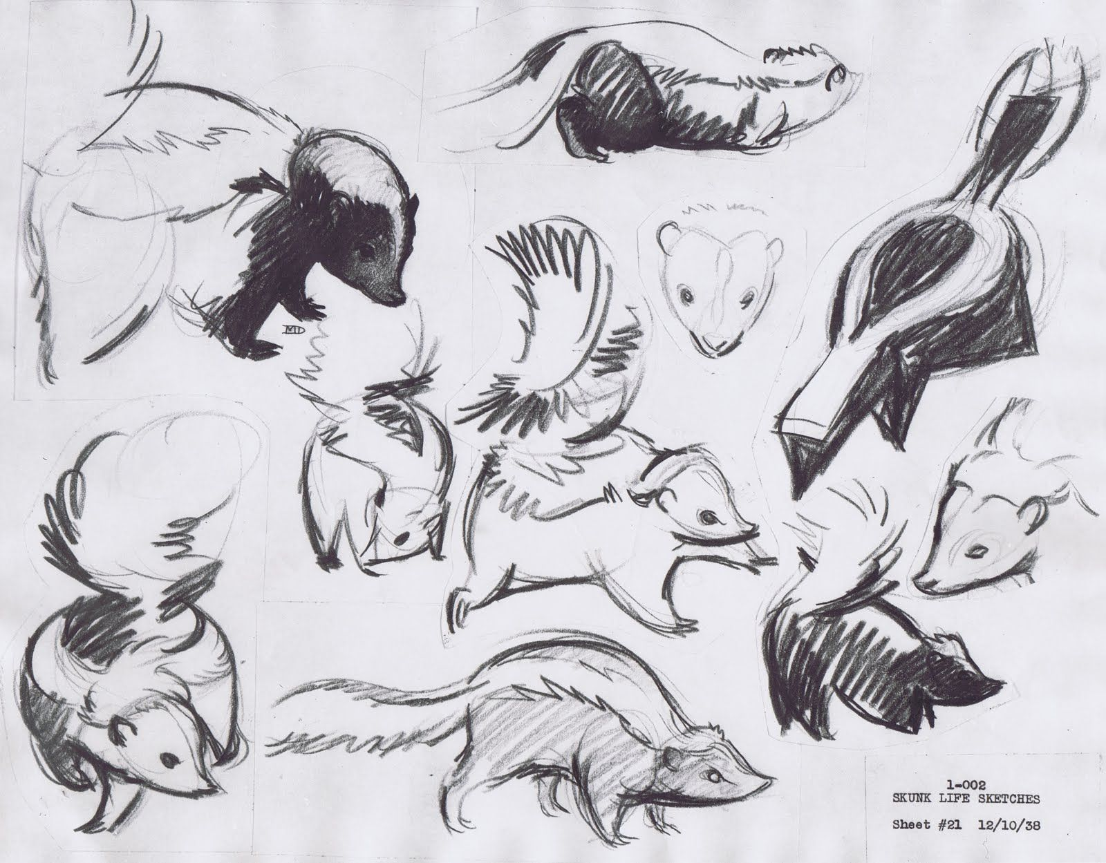Skunk Sketches For The Development Of Flower From Disneys Bambi