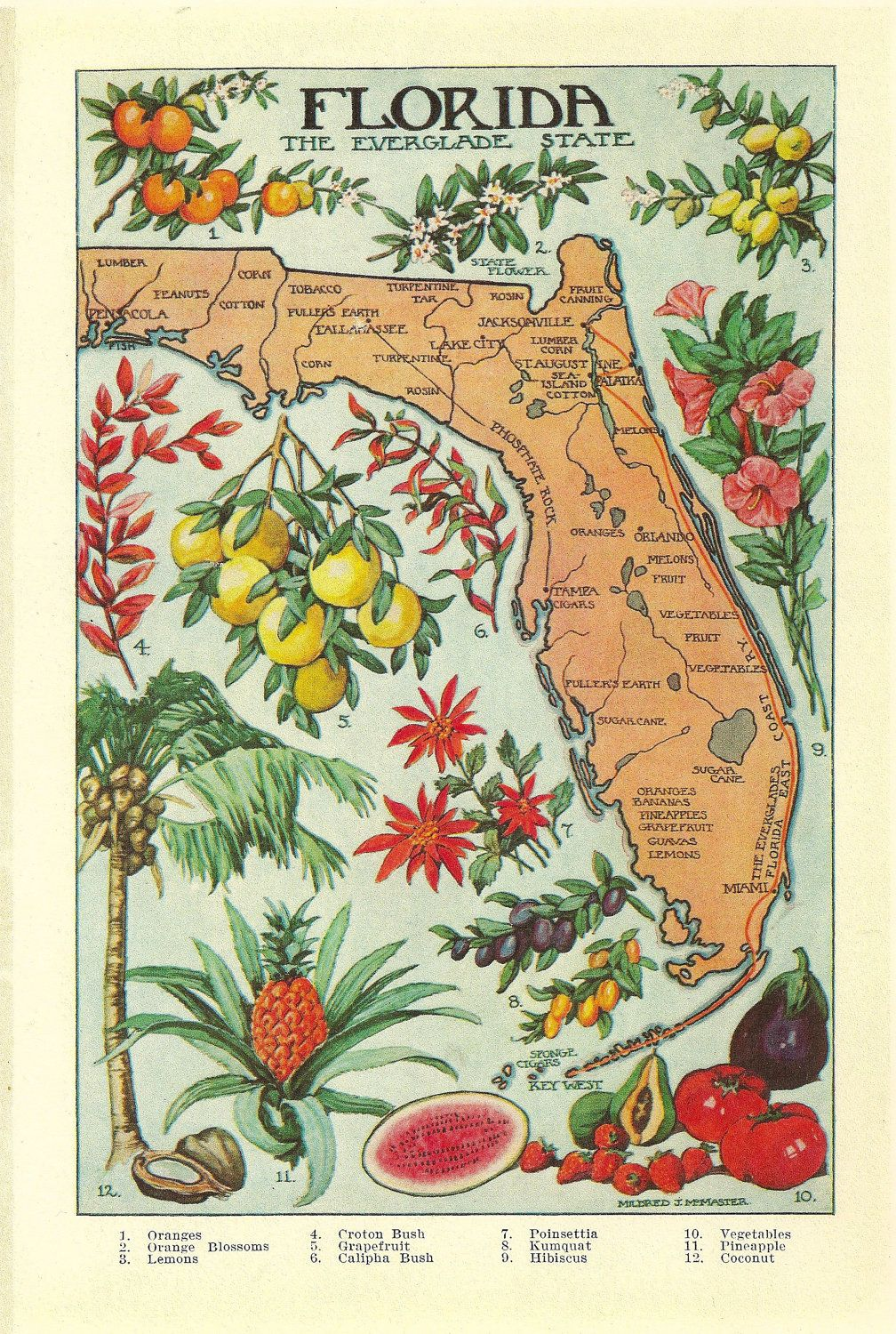 Vintage Florida Map.1912 Vintage Florida Illustrated Map Colorful And Lovely What