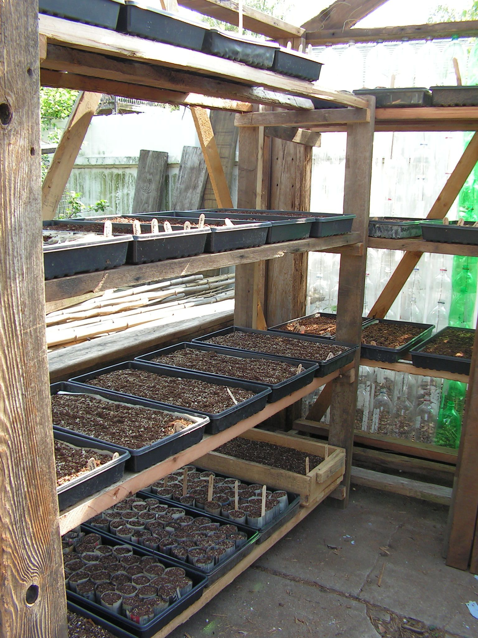 greenhouse shelving - google search | i'm in the greenhouse