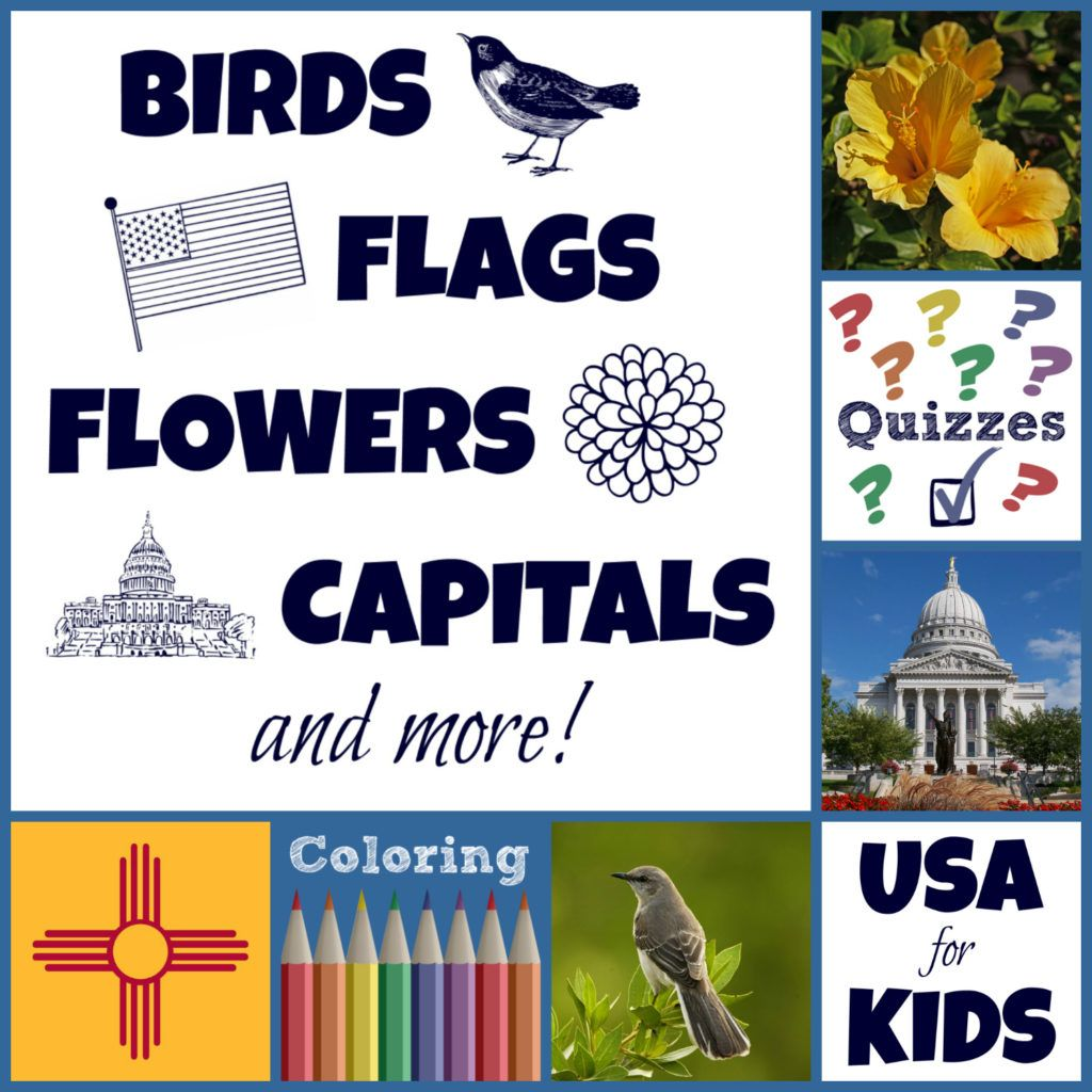 Pin By Sandy Jackson On Geography Pinterest Facts For Kids Usa