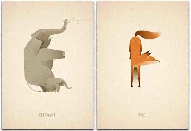 Animal Alphabet8