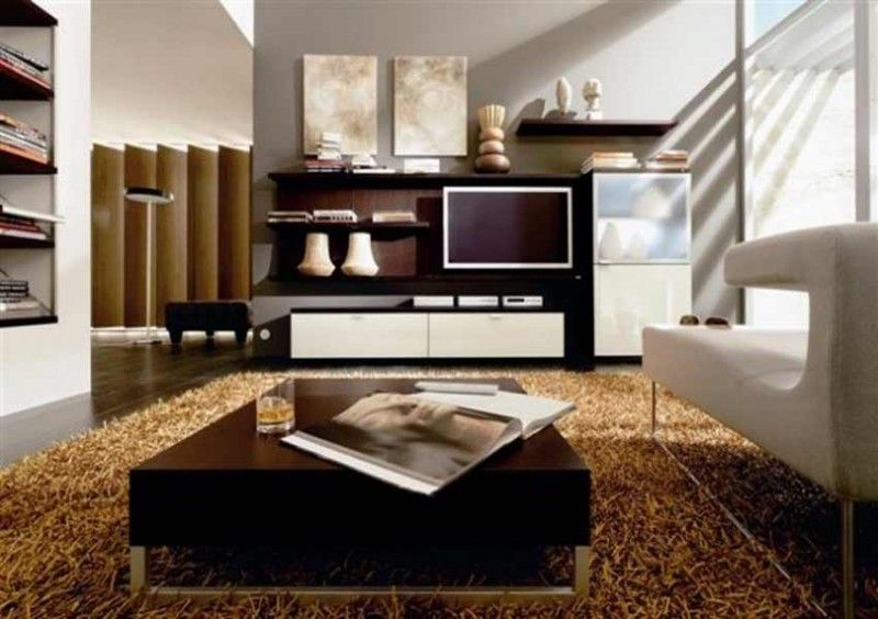 Room · Brown Feather Carpet